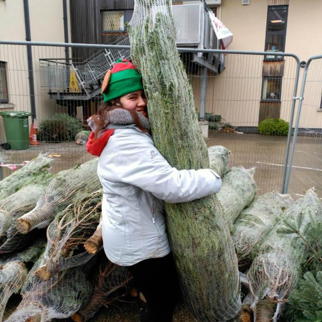 ymca-dublin-get-involved-christmas-tree_10